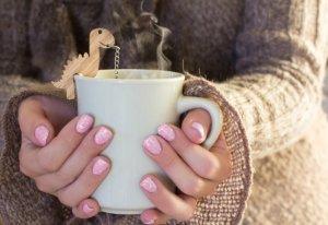 Rawr Tea Steeper