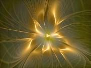 Divinidad (1)
