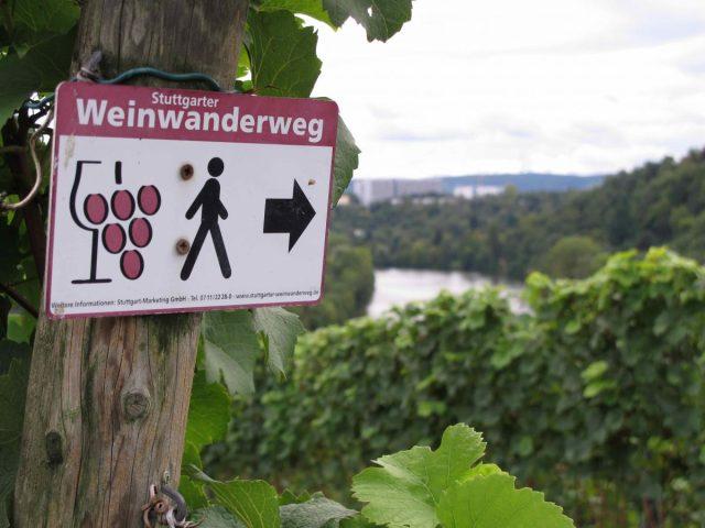 Wein_Cannstatt