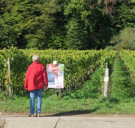 Deidesheim Wandern Pfalz