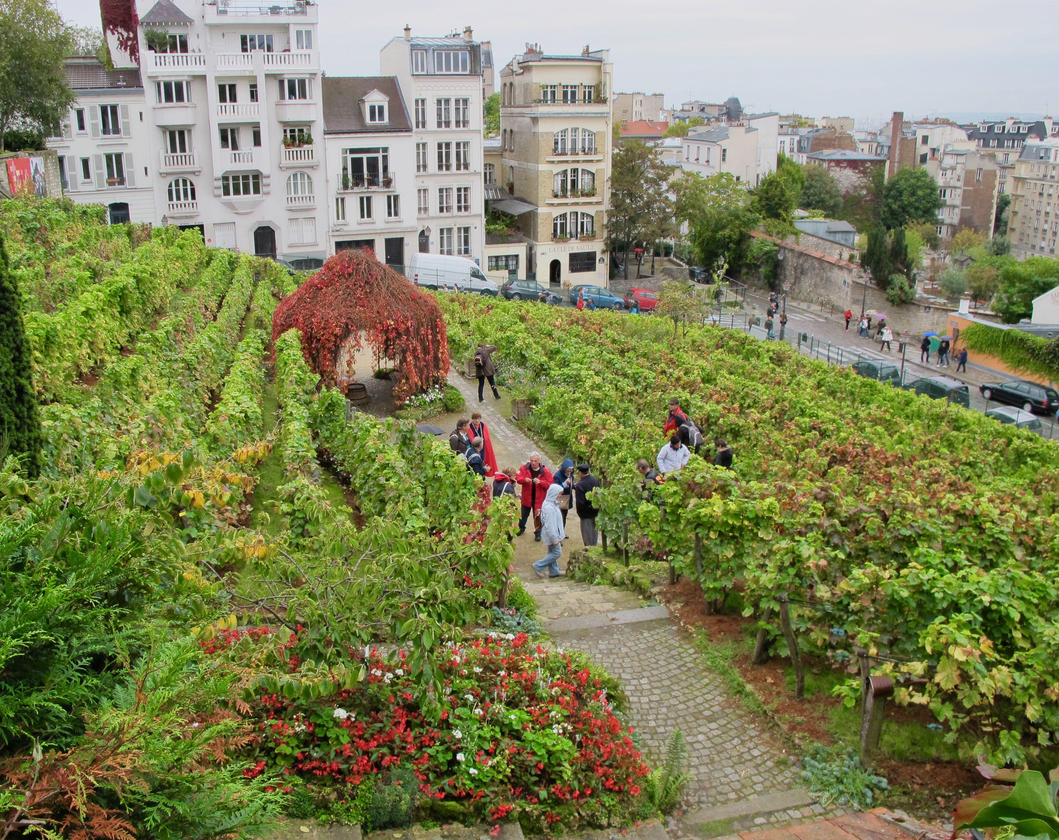 Clos Montmartre Paris