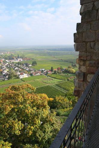 Pfalz_Wachenheim_5