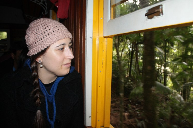 A young woman looking out the window of an old train, with the forest outside.