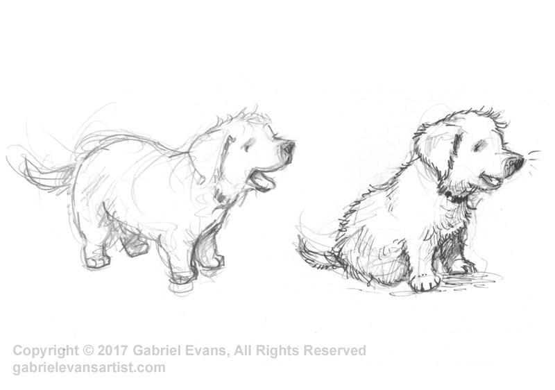 Puppies - Pencil