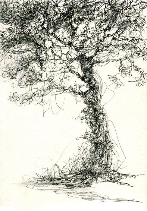 sketchbook-tree