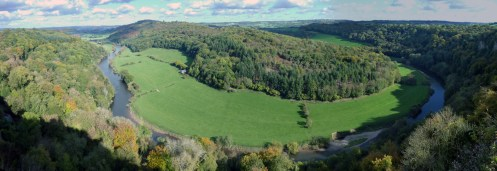 The Forest of Dean from Symonds Yat Rock