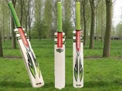 cricket-bat willows