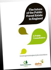 Public Forest Estate consultation
