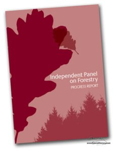 Independent Panel on Forestry progress report