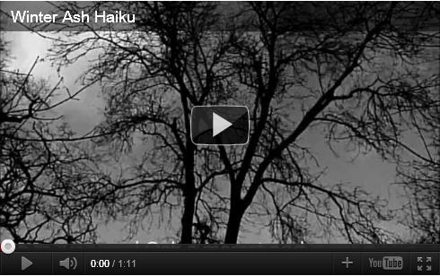 Winter Ash Haiku