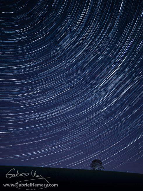 Beech tree clump and startrail