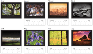 An inside preview of the Beauty of Trees 2018 calendar