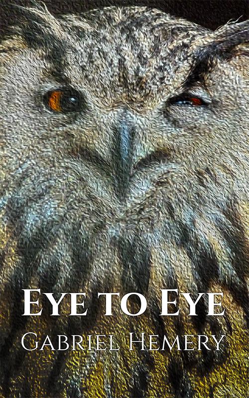Eye to Eye by Gabriel Hemery