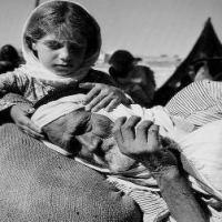 Joseph Halevi, La violenza fondatrice. Israele/Palestina. Le radici del conflitto