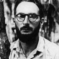 Claude Lévy-Strauss, Razza e storia
