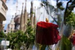 Dia de Sant Jordi - Sagrada Familia
