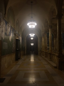 This is a hallway in the library. A HALLWAY in the LIBRARY. This place was unreal.