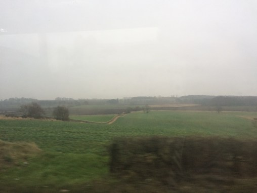I took this on the bus from Glasgow to St. Andrews. I hadn't seen green grass in a while and got very excited.