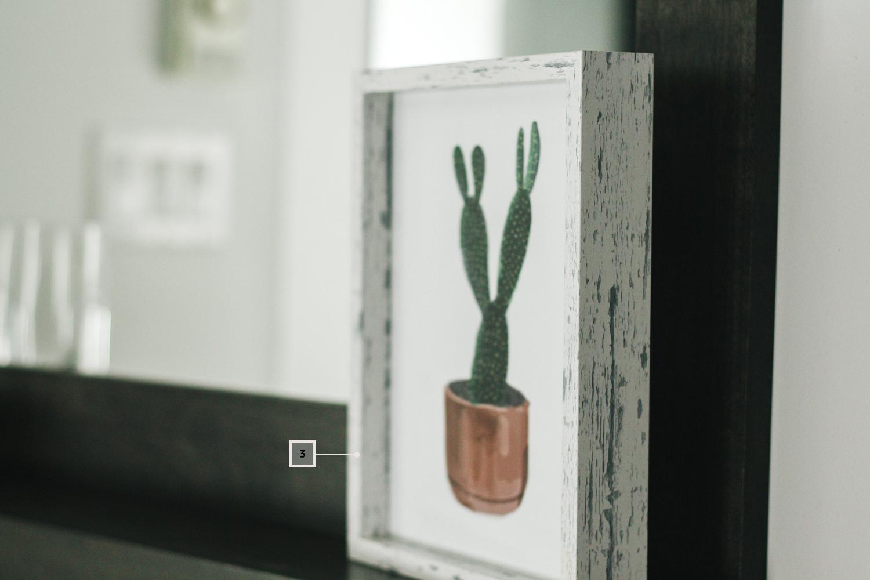 petite salle de bain - décoration - cadre cactus