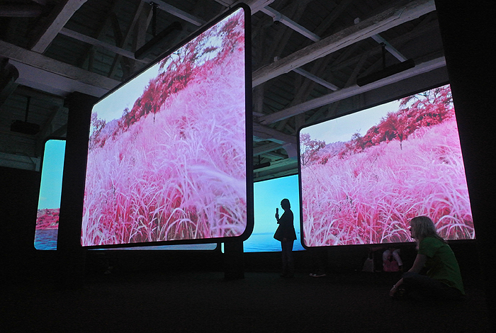 "How to Write a Review of Richard Mosse's ""The Enclave"""