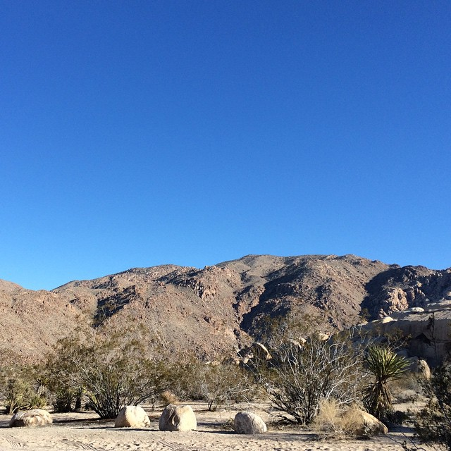 Beautiful dry warm perfect desert camping, first time to Joshua Tree