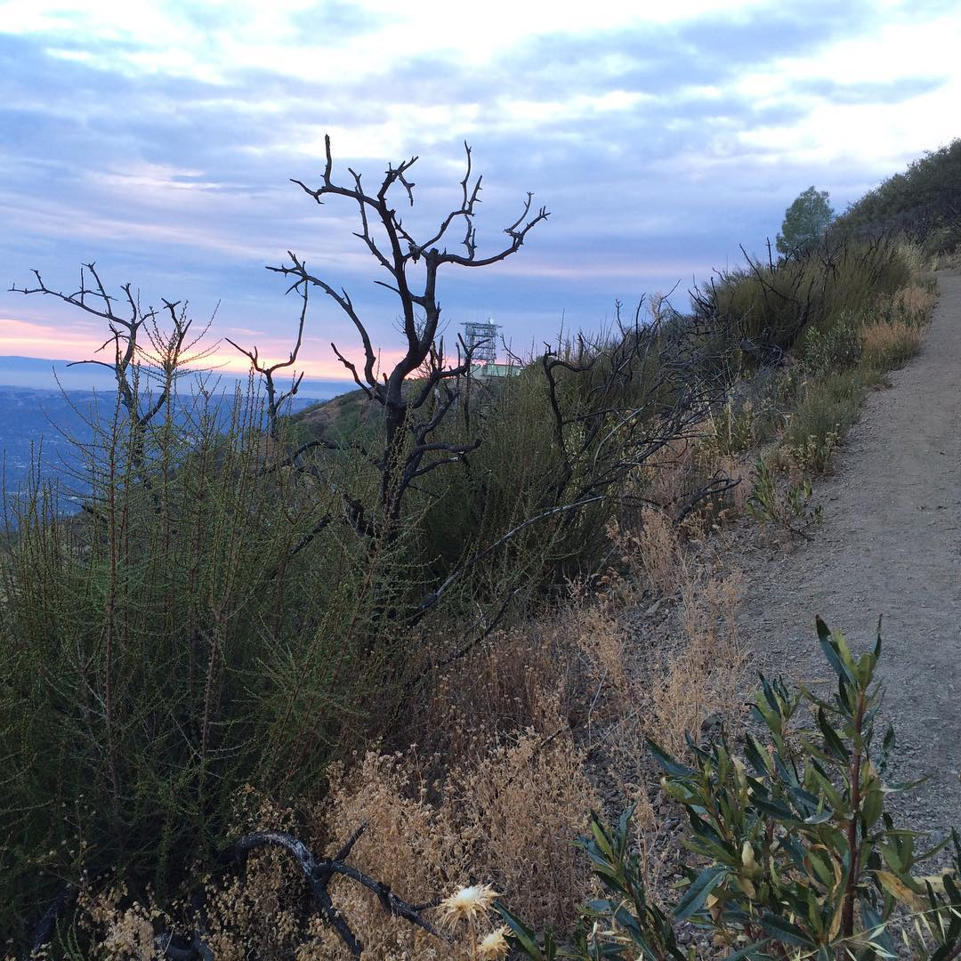 / Mt Diablo research project - hiking with Emily