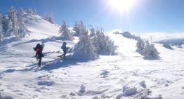 Stilul Păcală la ski de tură