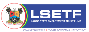 Training partnership with UNDP and LSETF