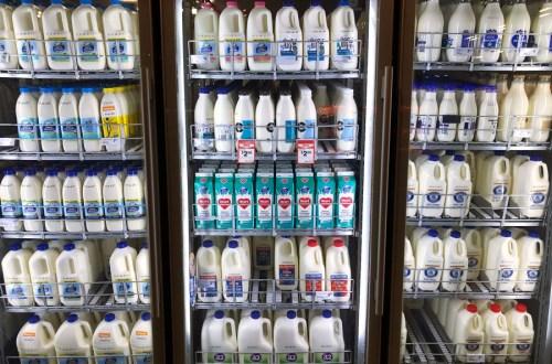 Milk as a sports supplement