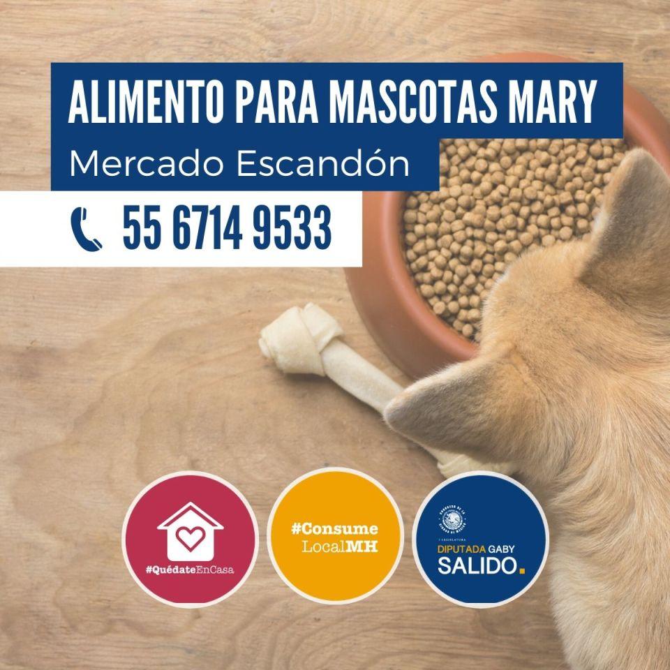 Alimento para mascotas Mary