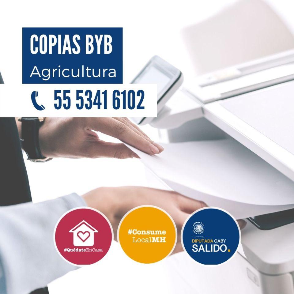 Copias Byb