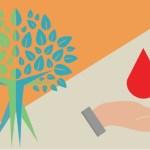 Donación: una puerta al estudio y la vida