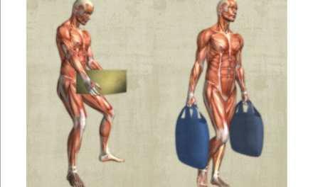 ¿Sabes cómo cuidar tu columna vertebral y qué la puede lesionar?