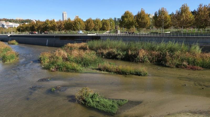 El Ayuntamiento de Madrid mantendrá la renaturalización del río Manzanares en todo el tramo urbano