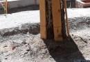 """Ecologistas en Acción denuncia que las obras en Madrid están dañando """"gravemente"""" el arbolado urbano"""