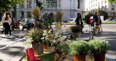 Madrid se suma este viernes al Park(ing) Day: jardines, huertos y actividades en aparcamientos