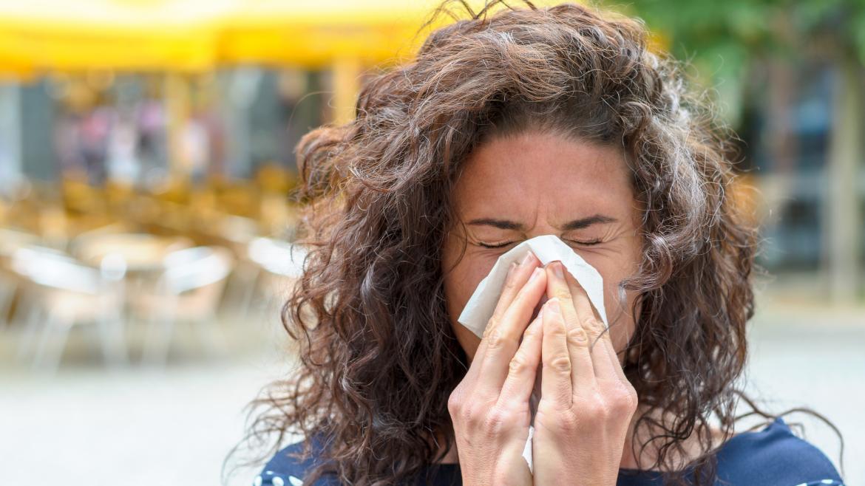 La Consejería de Sanidad activa el sistema de información diaria de niveles de polen para alérgicos