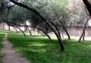 El Ayuntamiento acondicionará el parque Paseo Ermita-Villa Adriana de Moncloa-Aravaca