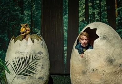Dino World llega a Madrid: un viaje lúdico y educativo de 65 millones de años al pasado
