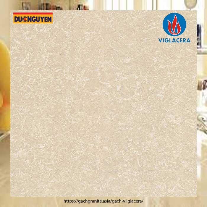gạch viglacera 60x60 ts2-612