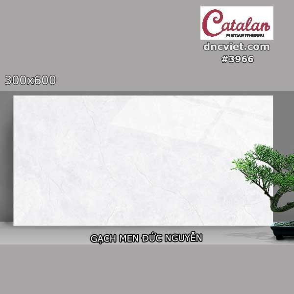 gạch ốp tường 30x60 catalan 3966