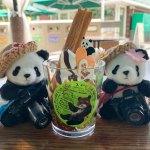 8月2回目の上野動物園からのソラマチ