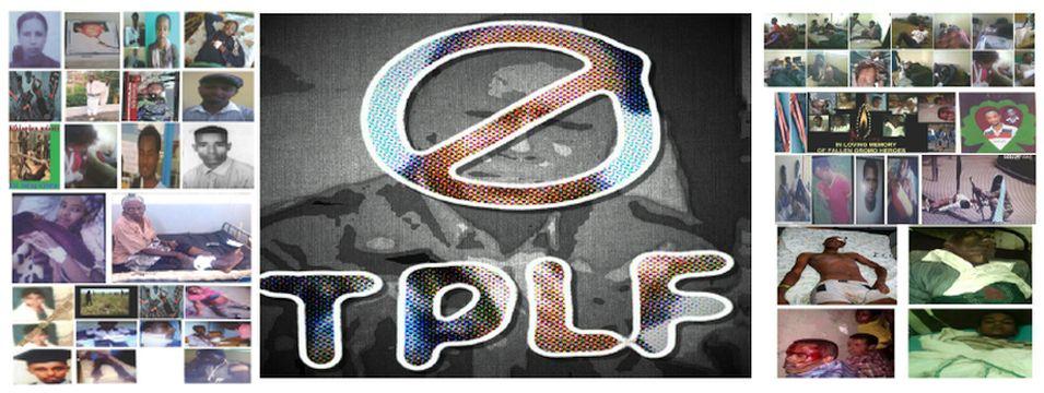 NoToTPLF2015