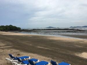 review westin playa bonita at low tide