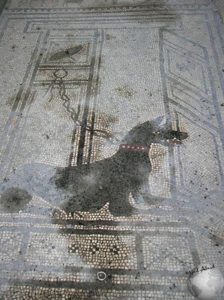 Pompeii_DSCN1150