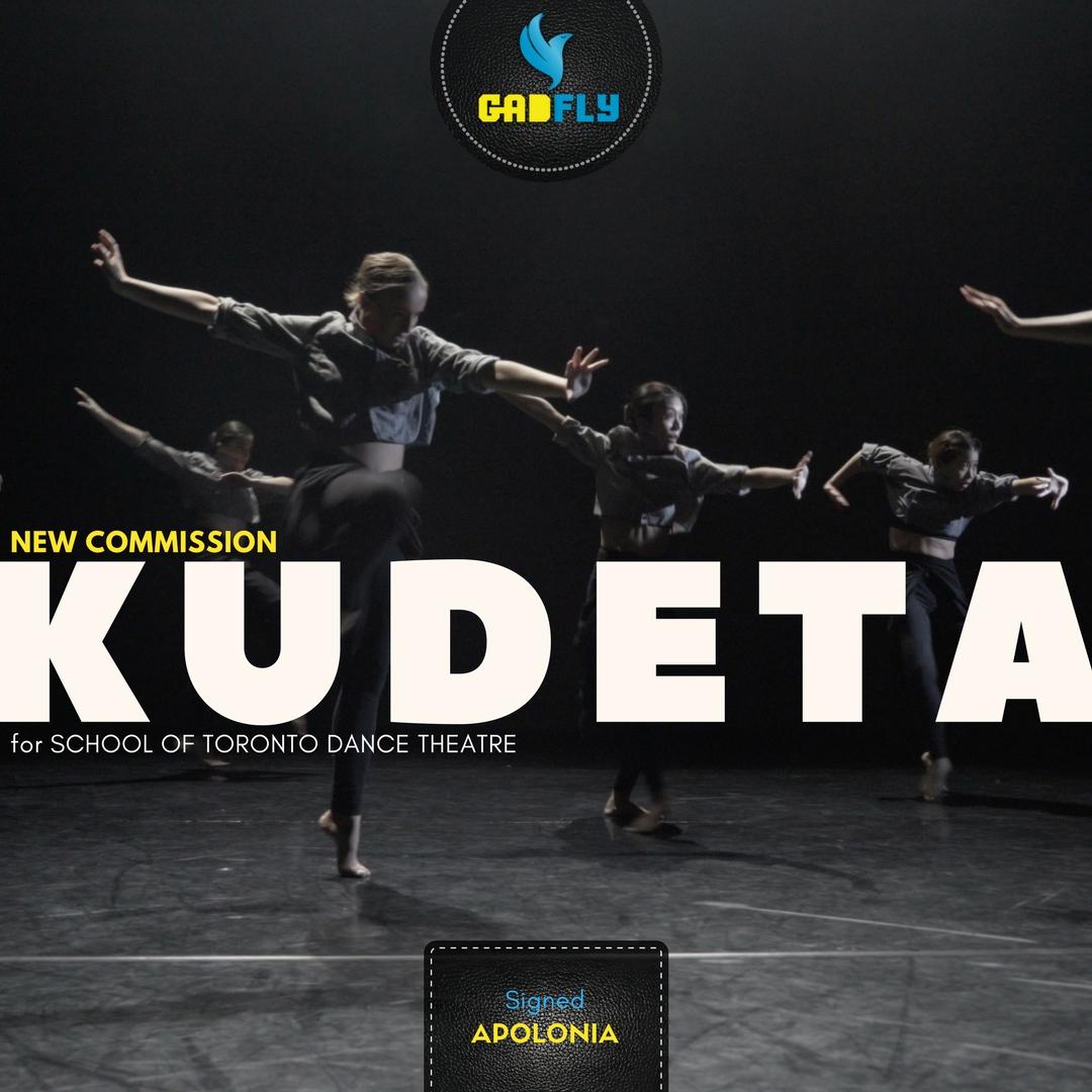 Gadfly Apolonia - KUDETA - STDT Commision