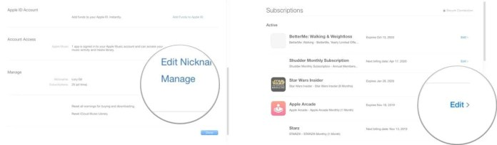 subscription on your Mac