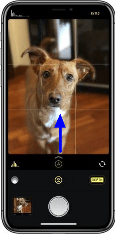 Shoot RAW photos on your iPhone