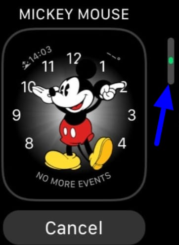 add and remove watch faces