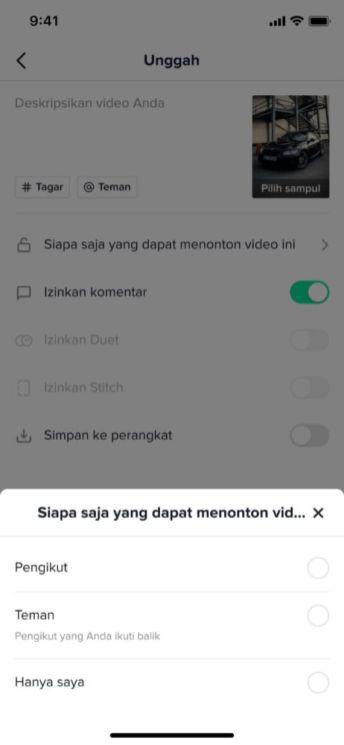 Pengaturan Untuk Menentukan Siapa Yang Dapat Menonton Video